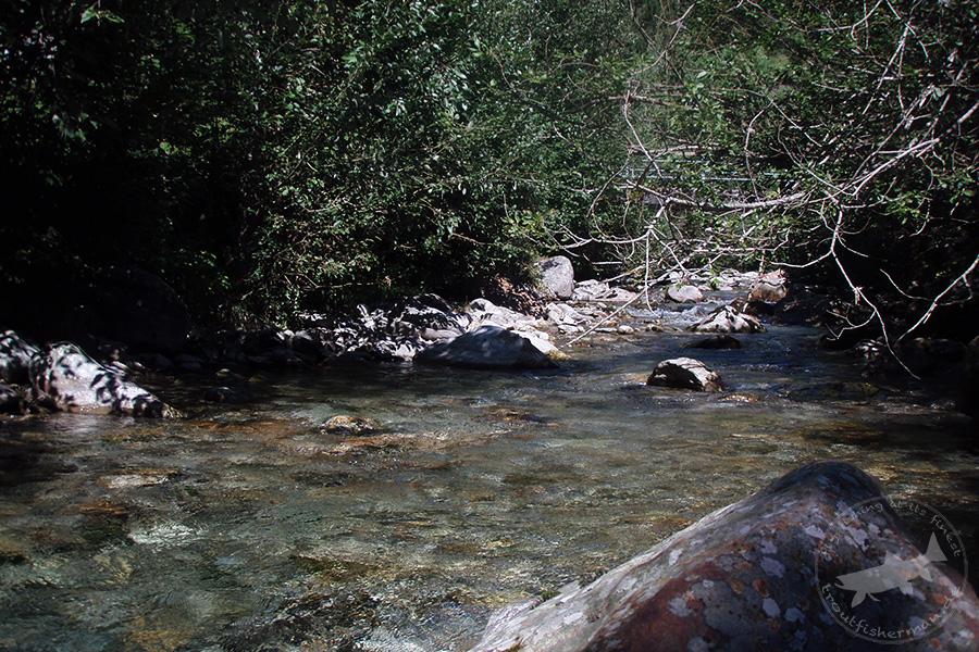 triftwasser (2)