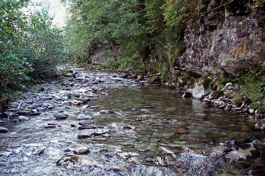 triftwasser (5)