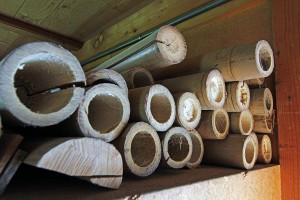 bamboo_rods_1