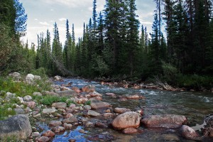 maligne_river_fishing